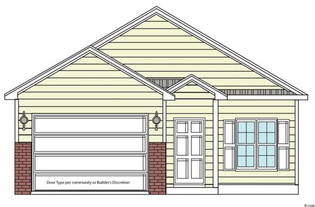 171 Clay Pond Village Ln., Myrtle Beach, SC 29588 (MLS #1819439) :: Right Find Homes