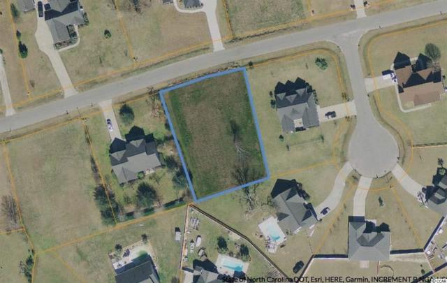 667 Sunny Pond Ln., Aynor, SC 29511 (MLS #1819503) :: The Hoffman Group