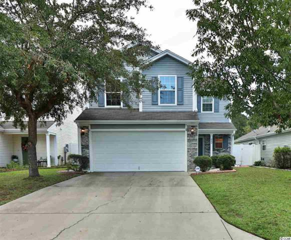 442 Dandelion Ln., Myrtle Beach, SC 29579 (MLS #1819984) :: The Trembley Group