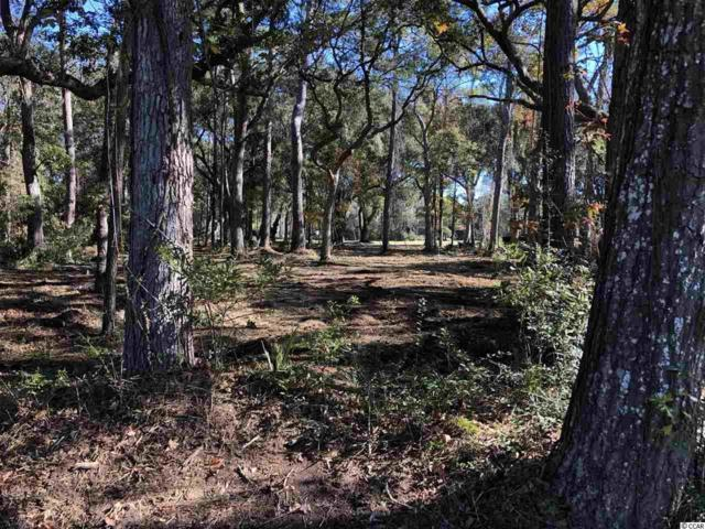 Lot 6 Wallace Pate Dr., Georgetown, SC 29440 (MLS #1820090) :: James W. Smith Real Estate Co.