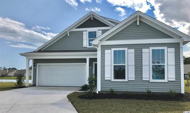 823 Yauhannah Dr., Little River, SC 29566 (MLS #1820325) :: Right Find Homes