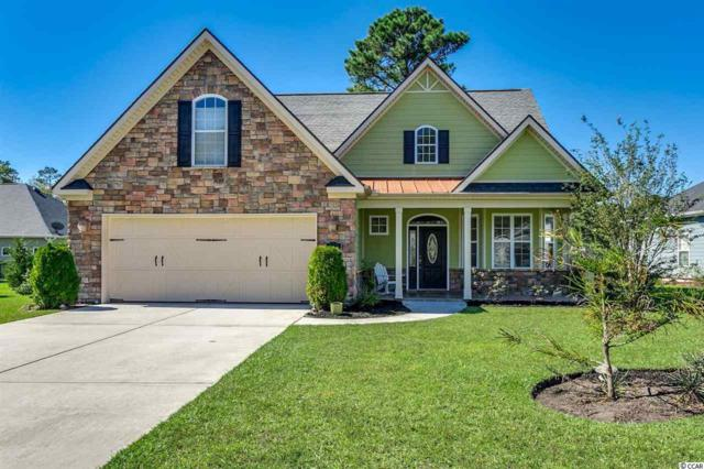 165 Swallow Tail Ct., Little River, SC 29566 (MLS #1820837) :: Right Find Homes