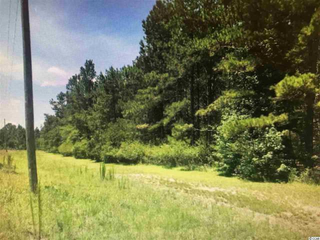 2801 North Dr., Galivants Ferry, SC 29544 (MLS #1821021) :: The Hoffman Group