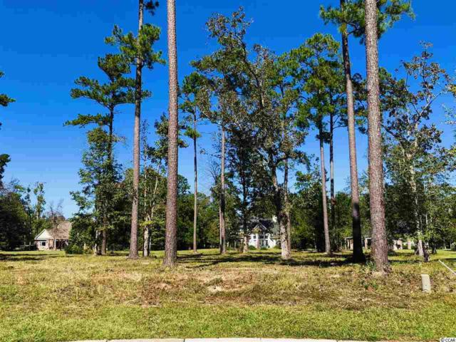 7062 Byrnes Ln., Myrtle Beach, SC 29588 (MLS #1821039) :: Matt Harper Team