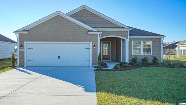 5307 Shorthorn Way, Myrtle Beach, SC 29588 (MLS #1821040) :: James W. Smith Real Estate Co.