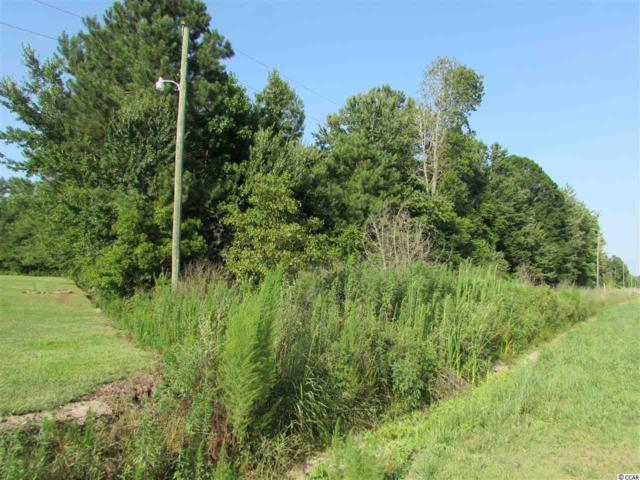 2829 Bertie Rd., Green Sea, SC 29545 (MLS #1821130) :: The Greg Sisson Team with RE/MAX First Choice