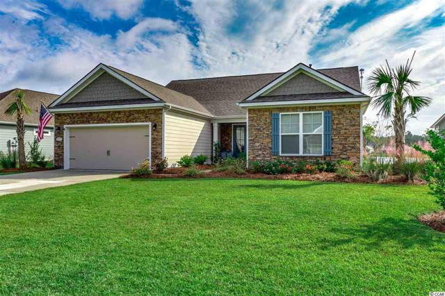 455 Hyacinth Loop, Murrells Inlet, SC 29576 (MLS #1821216) :: The Hoffman Group