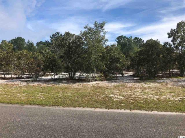 TBD Frances Marion Dr., Georgetown, SC 29440 (MLS #1821417) :: The Litchfield Company