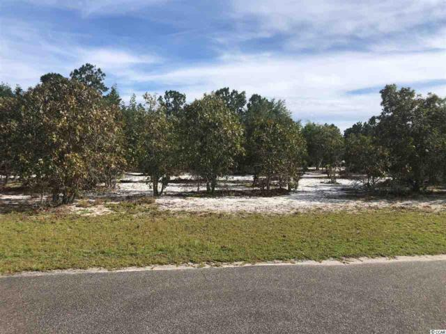 TBD Frances Marion Dr., Georgetown, SC 29440 (MLS #1821418) :: The Litchfield Company