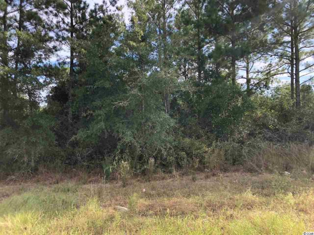 TBD Frances Marion Dr., Georgetown, SC 29440 (MLS #1821420) :: The Litchfield Company