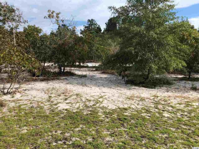 TBD Frances Marion Dr., Georgetown, SC 29440 (MLS #1821421) :: The Litchfield Company