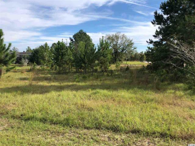 TBD Frances Marion Dr., Georgetown, SC 29440 (MLS #1821423) :: The Litchfield Company