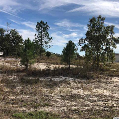 TBD Frances Marion Dr., Georgetown, SC 29440 (MLS #1821424) :: The Litchfield Company