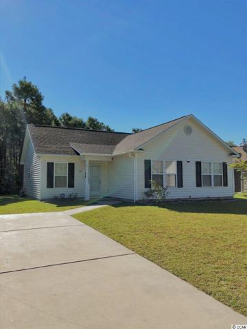 541 West Perry Rd., Myrtle Beach, SC 29579 (MLS #1821459) :: The Litchfield Company