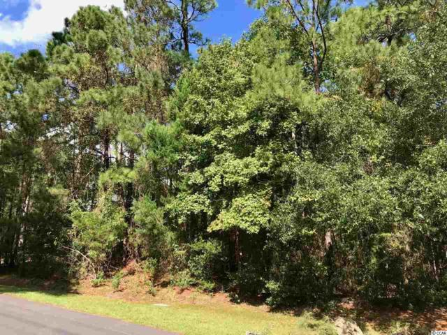 Lot 1 Collins Meadow Dr., Georgetown, SC 29440 (MLS #1821677) :: The Homes & Valor Team