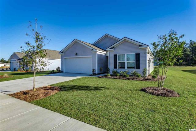3209 Holly Loop, Conway, SC 29527 (MLS #1821682) :: Right Find Homes