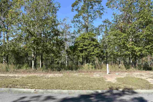 549 Sanctuary Point Sw, Supply, NC 28462 (MLS #1821802) :: The Hoffman Group