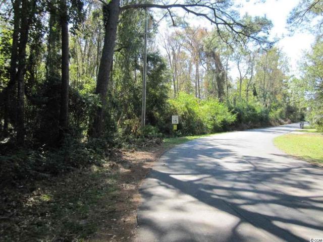TBD Woodview Ln., Myrtle Beach, SC 29575 (MLS #1822170) :: The Hoffman Group