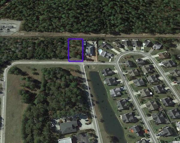 3057 New Castle Loop, Myrtle Beach, SC 29588 (MLS #1822359) :: The Litchfield Company