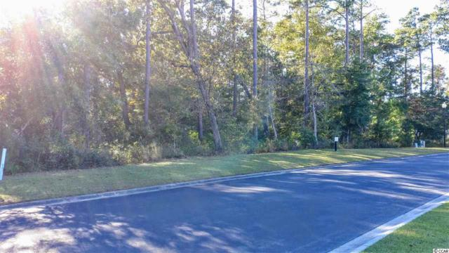 162 Creek Harbour Circle, Murrells Inlet, SC 29576 (MLS #1822498) :: Right Find Homes