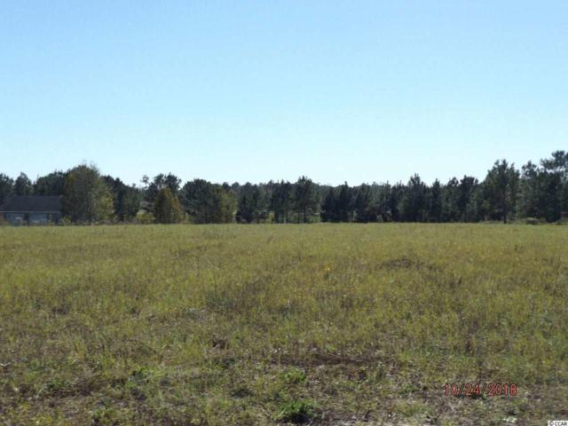 LOT 4-B Pebble Ln., Conway, SC 29526 (MLS #1822901) :: The Hoffman Group