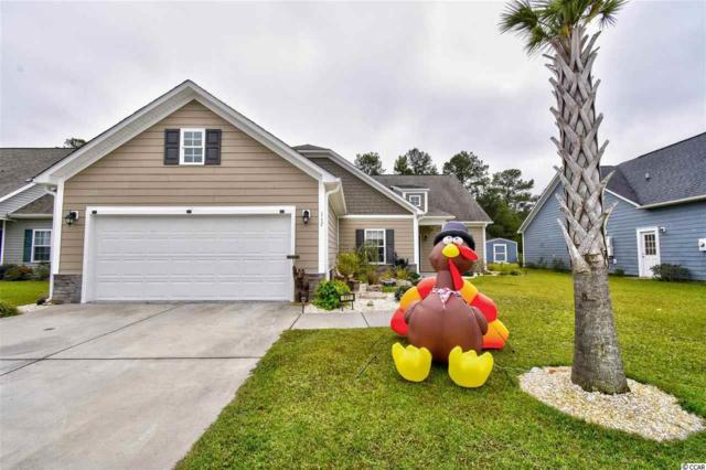 117 Barons Bluff Dr., Conway, SC 29526 (MLS #1822920) :: Myrtle Beach Rental Connections