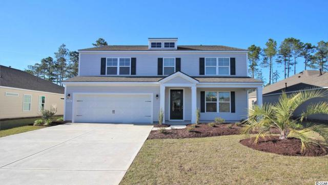 TBD 1 Star Buck Lake Rd., Murrells Inlet, SC 29576 (MLS #1822925) :: Matt Harper Team