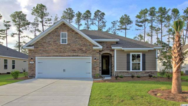 TBD 2 Star Buck Lake Rd., Murrells Inlet, SC 29576 (MLS #1822956) :: Matt Harper Team
