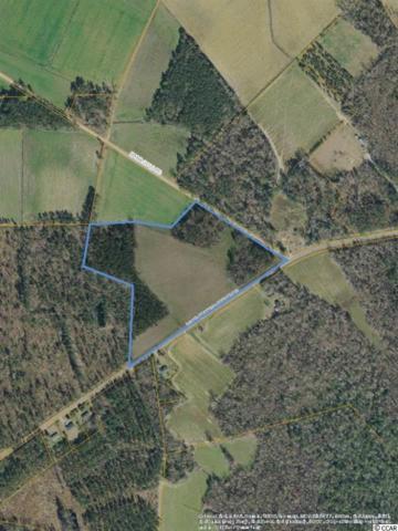 NW Long Branch Swamp Rd., Nichols, SC 29581 (MLS #1823066) :: The Hoffman Group