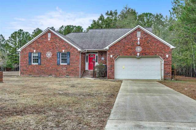 376 Pitch Landing Rd., Conway, SC 29527 (MLS #1823084) :: The Greg Sisson Team with RE/MAX First Choice