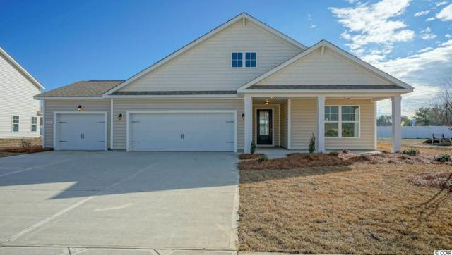 TBD 29 Star Buck Lake Rd., Murrells Inlet, SC 29576 (MLS #1823107) :: The Greg Sisson Team with RE/MAX First Choice