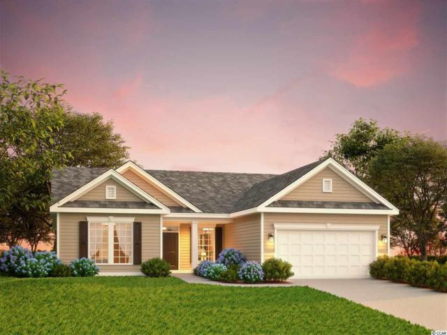 3635 Diamond Stars Way, Little River, SC 29566 (MLS #1823231) :: Right Find Homes