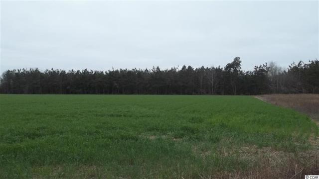 81.5 AC Delta Mills Rd., Pamplico, SC 29583 (MLS #1823321) :: The Homes & Valor Team