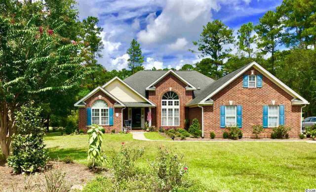 124 John Waites Ct., Georgetown, SC 29440 (MLS #1823518) :: Right Find Homes