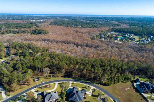 190 Creek Harbour Circle, Murrells Inlet, SC 29576 (MLS #1823547) :: Right Find Homes