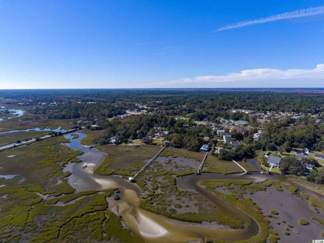 176 Sea Level Loop, Pawleys Island, SC 29585 (MLS #1823637) :: The Litchfield Company