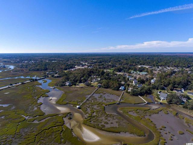 176 Sea Level Loop, Pawleys Island, SC 29585 (MLS #1823637) :: The Hoffman Group