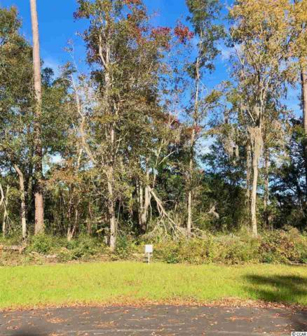 10 Northwoods Ct., Pawleys Island, SC 29585 (MLS #1823736) :: Right Find Homes