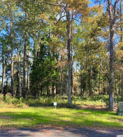 11 Northwoods Ct., Pawleys Island, SC 29585 (MLS #1823737) :: Right Find Homes