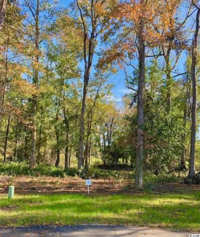 12 Northwoods Ct., Pawleys Island, SC 29585 (MLS #1823738) :: Right Find Homes