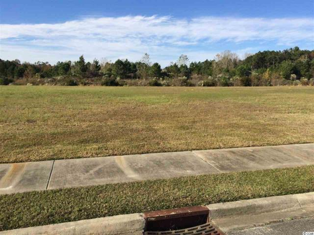 366 Harbour View Dr., Myrtle Beach, SC 29579 (MLS #1823791) :: Right Find Homes