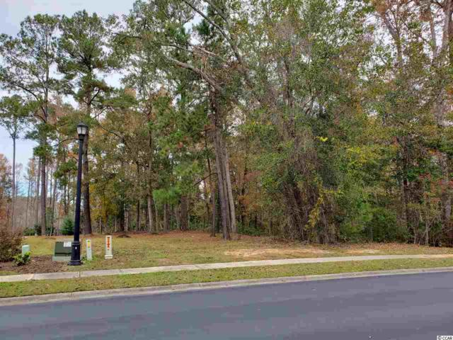 324 Chamberlin Rd., Myrtle Beach, SC 29588 (MLS #1823844) :: Right Find Homes