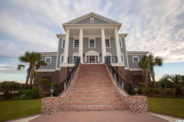 8806 N Ocean Blvd., Myrtle Beach, SC 29572 (MLS #1824071) :: The Litchfield Company