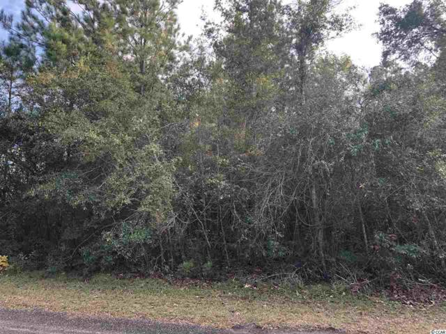 Lot 13 Mohican Dr., Georgetown, SC 29440 (MLS #1824182) :: Trading Spaces Realty