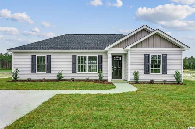 127 Pumpkin Ash Loop, Conway, SC 29527 (MLS #1824382) :: James W. Smith Real Estate Co.