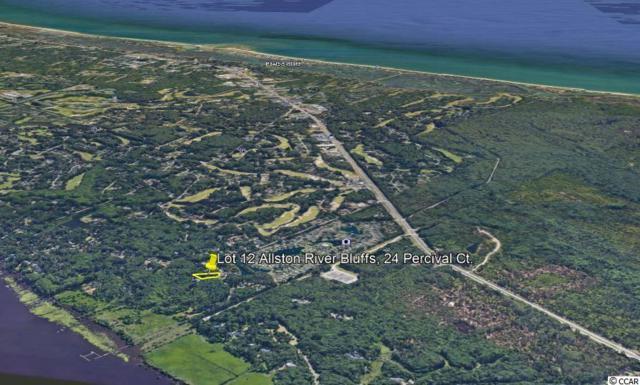 24 Percival Ct., Pawleys Island, SC 29585 (MLS #1824598) :: The Hoffman Group