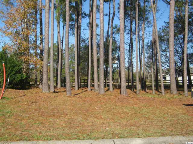 313 Crossing Ct., Myrtle Beach, SC 29588 (MLS #1824620) :: The Hoffman Group