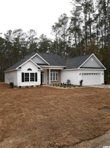154 Joanna Gillard Ln., Georgetown, SC 29440 (MLS #1824864) :: The Trembley Group