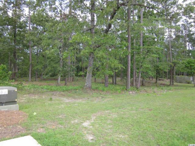 210 Creek Harbour Circle, Murrells Inlet, SC 29576 (MLS #1824890) :: Right Find Homes