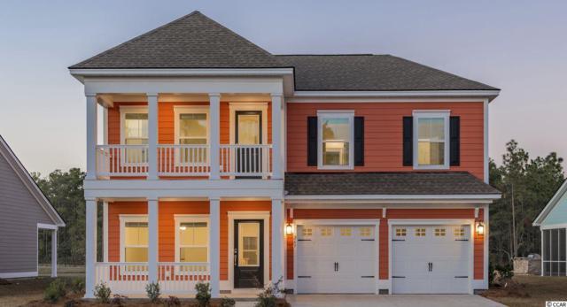 162 Sago Palm Dr., Myrtle Beach, SC 29579 (MLS #1824919) :: James W. Smith Real Estate Co.